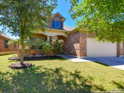 Guadalupe County Single Family Home For Sale: 401 Prickly Pear Dr