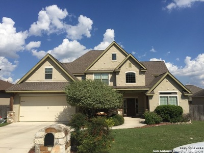 Boerne Single Family Home For Sale: 217 Lone Tree