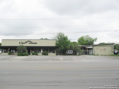 Comal County Commercial For Sale: 125 S Business Ih 35