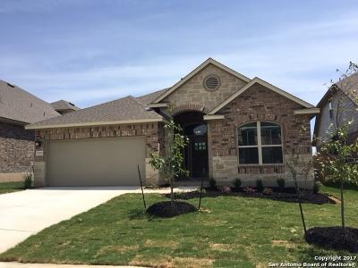 Single Family Home For Sale: 22213 Akin Doe