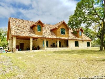 Medina County Single Family Home For Sale: 391 Pr 6744
