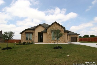 Schertz Single Family Home For Sale: 10469 Gage Park