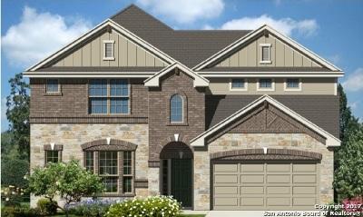 Schertz Single Family Home For Sale: 4933 Battle Lake
