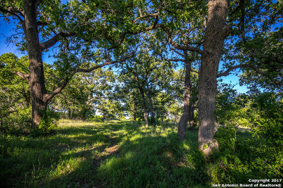 Guadalupe County Farm & Ranch For Sale: 2720 Elm Creek Rd