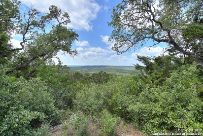Hondo Farm & Ranch For Sale: 173 N Whisper Valley Road