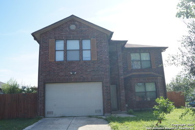 Single Family Home For Sale: 2336 Dalhart Pass
