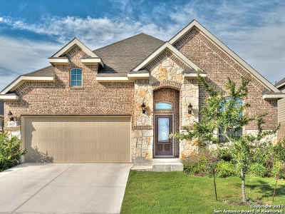 San Antonio Single Family Home For Sale: 4827 Palma Nova St
