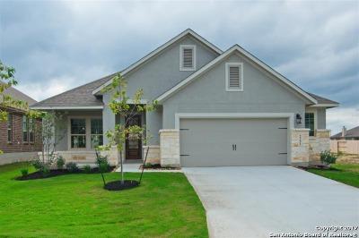 San Antonio Single Family Home Price Change: 2231 Derussy Hills