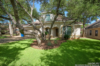 Fair Oaks Ranch Single Family Home For Sale: 29643 Terra Bella