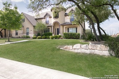 Boerne Single Family Home For Sale: 10403 Star Mica