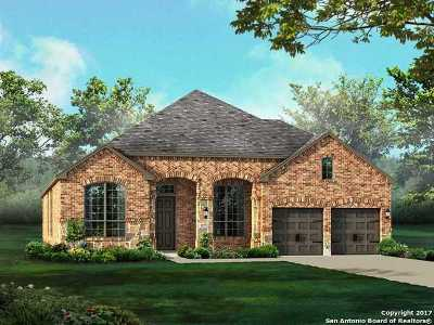 Boerne Single Family Home For Sale: 28830 Benedikt Path