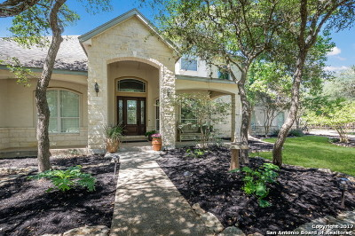 Fair Oaks Ranch Single Family Home For Sale: 8205 Fair Oaks Pkwy
