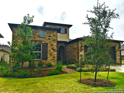 Boerne Single Family Home For Sale: 29030 Axis View