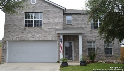 Single Family Home For Sale: 9758 Magic Cedar
