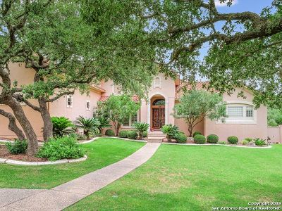 Bexar County Single Family Home For Sale: 922 Campanile