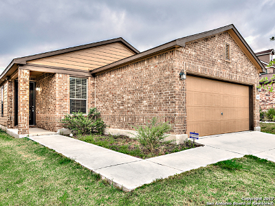 Single Family Home For Sale: 4311 Rothberger Way
