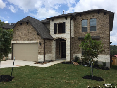 San Antonio Single Family Home For Sale: 23039 Evangeline