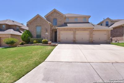 Single Family Home For Sale: 539 Roamer Park