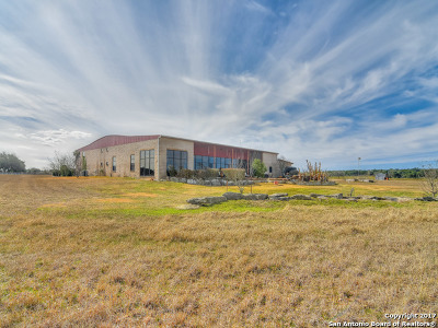 Boerne Single Family Home For Sale: 124 Cascade Caverns