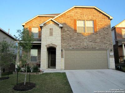 San Antonio Single Family Home Back on Market: 1602 Desert Candle