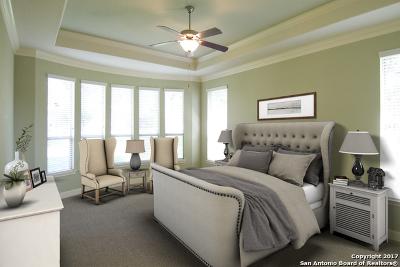 San Antonio TX Rental For Rent: $2,700