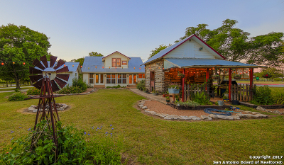 Boerne Single Family Home For Sale: 521 Adler St