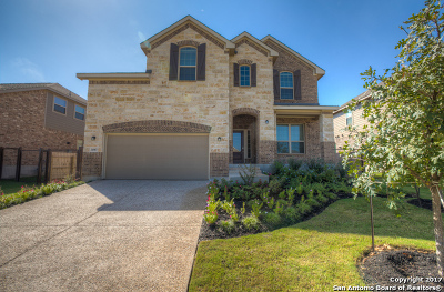 Johnson Ranch, Johnson Ranch - Comal Single Family Home For Sale: 31987 Cast Iron Cove