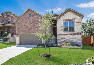 Boerne Single Family Home For Sale: 9919 Jon Boat Way