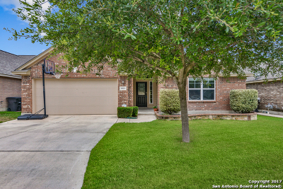 Helotes Single Family Home For Sale: 9019 Western Vw