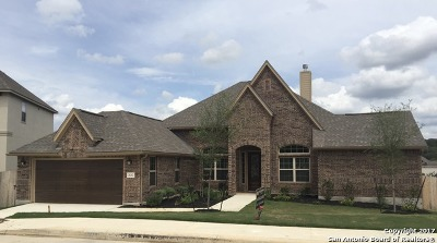 Boerne Single Family Home For Sale: 28202 Versant Hls