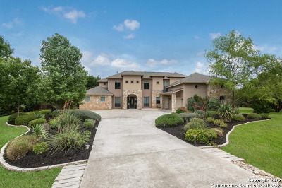 Helotes Single Family Home For Sale: 15820 Chinquapin