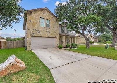San Antonio Single Family Home Price Change: 25851 Big Bluestem