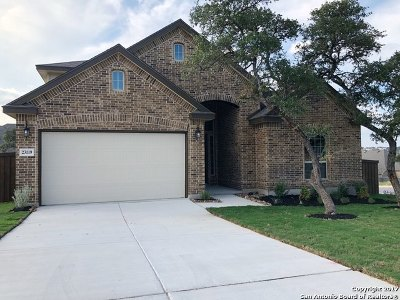 San Antonio Single Family Home For Sale: 23119 Emerald Pass
