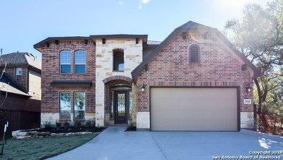San Antonio Single Family Home For Sale: 1910 Eagle Mountain