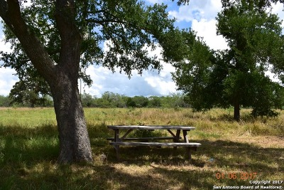 Farm & Ranch For Sale: 2660 W Us Highway 90