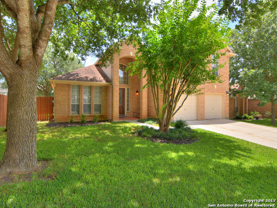 Guadalupe County Single Family Home For Sale: 217 Turkey Tree