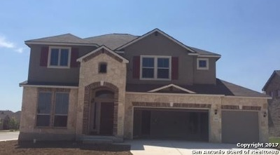 New Braunfels Single Family Home For Sale: 356 Green Heron