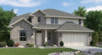 New Braunfels Single Family Home For Sale: 5614 Haven Way