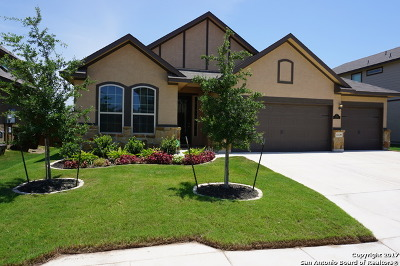 Single Family Home For Sale: 13139 Waterlily Way