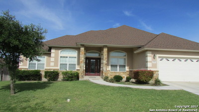 Comal County Single Family Home For Sale: 1151 Cherry Hl