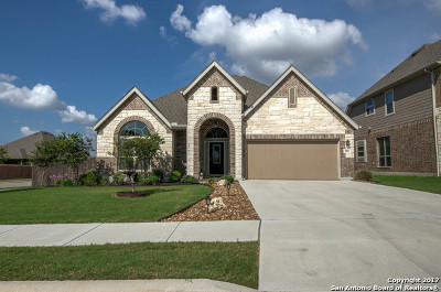 Cibolo Single Family Home For Sale: 905 Alpino