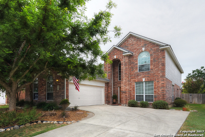 Helotes Single Family Home For Sale: 10402 Canyon Riv