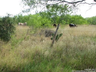 Atascosa County Farm & Ranch For Sale: 7515 Bluntzer