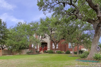 Boerne Single Family Home For Sale: 8320 Monument Oak
