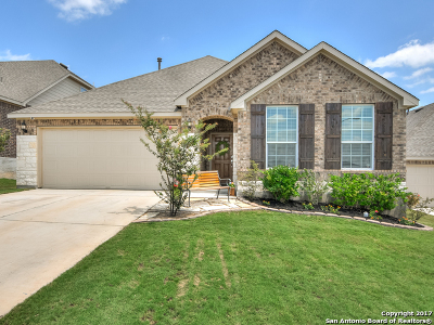 Boerne Single Family Home For Sale: 7415 Valle Msn