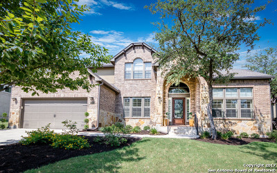 Boerne Single Family Home For Sale: 28014 Vine Cliff