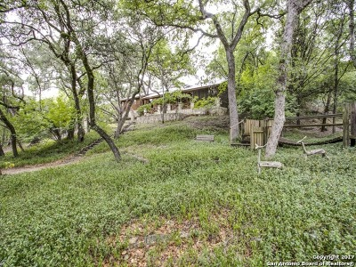 Helotes Single Family Home For Sale: 19722 Grey Forest Drive