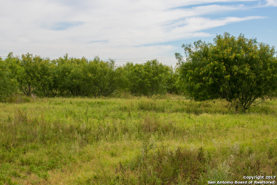 Residential Lots & Land For Sale: 9145 Hildebrandt Rd