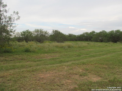 Guadalupe County Residential Lots & Land For Sale: 8383 Fm 467