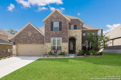 Alamo Ranch Single Family Home For Sale: 6002 Amber Rose